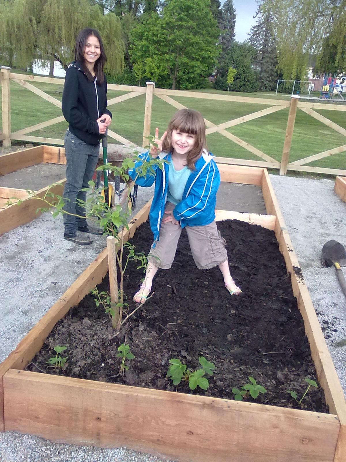 Garden Plot Ideas Design Within Reach