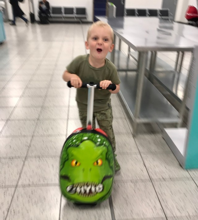 Flyte Zinc Scooter Case airport