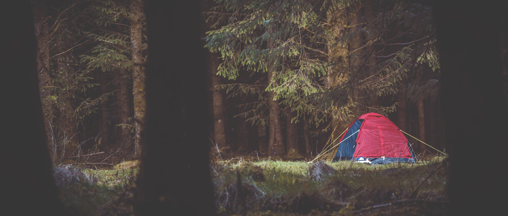 Dartmoor wild camping tent in forest