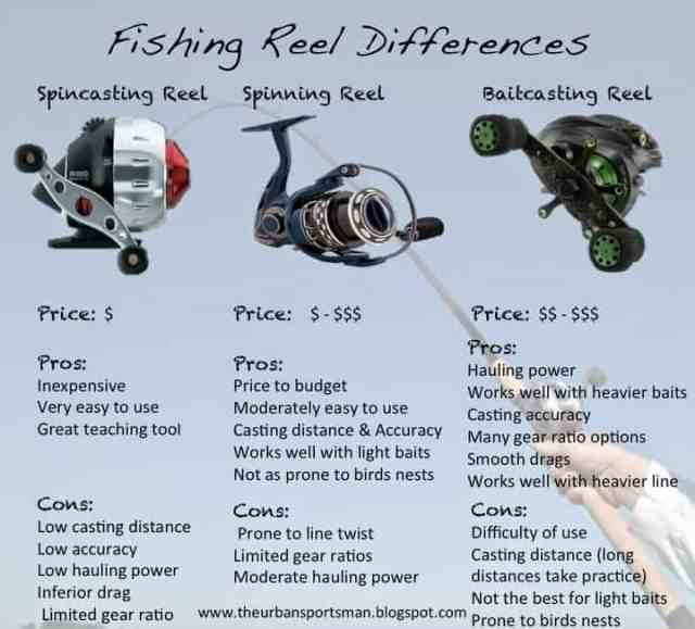 Popular Fishing Reel Differences