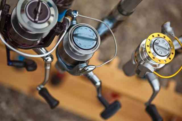 Different Fishing Reels