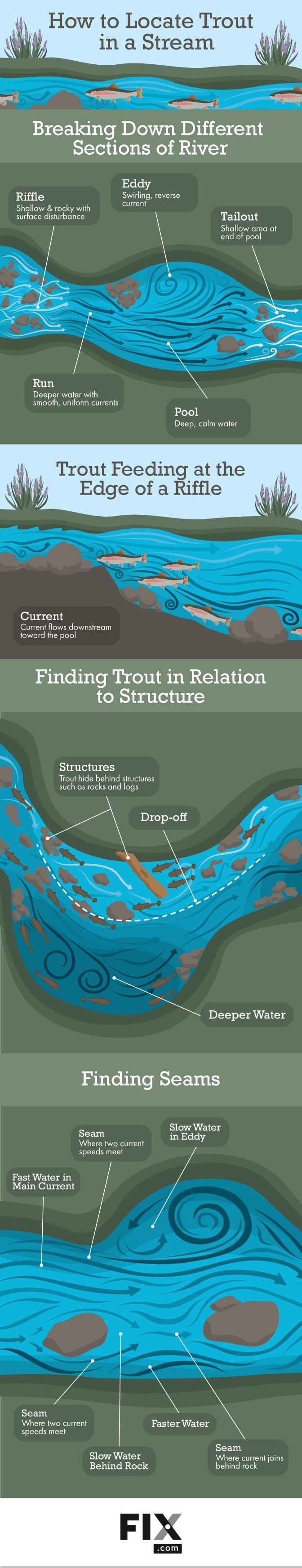 locate trouts in a stream