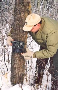 Setting up a Trail Cam