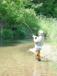 A Summer trout stream, notice I'm fishing the shade