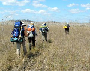 Open Prairie on Florida Trail