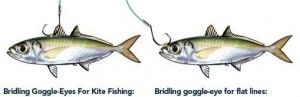 Methods to rig live Goggle Eyes