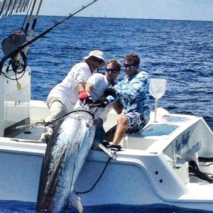Florida Swordfish