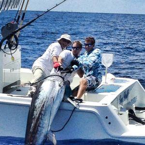 Florida Swordfish