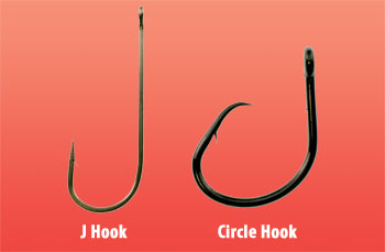 compare Circle Hooks