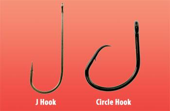 compare Circle Hooks