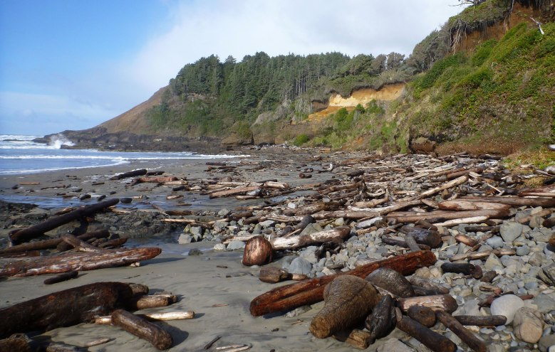 All the big wood in the wrack line got mobilized by a big spring tide