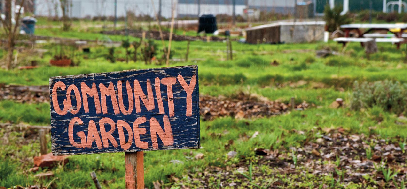Community Gardens Dominate This Years Eastern Health Community