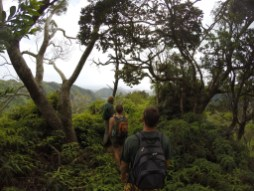 Kaau Crater Hike