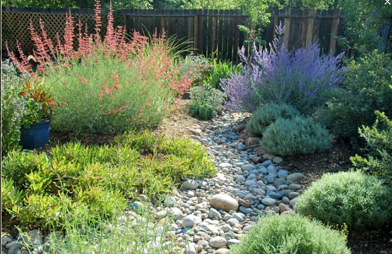 Dry River Bed Landscaping Ideas Home Design Ideas Dry Garden