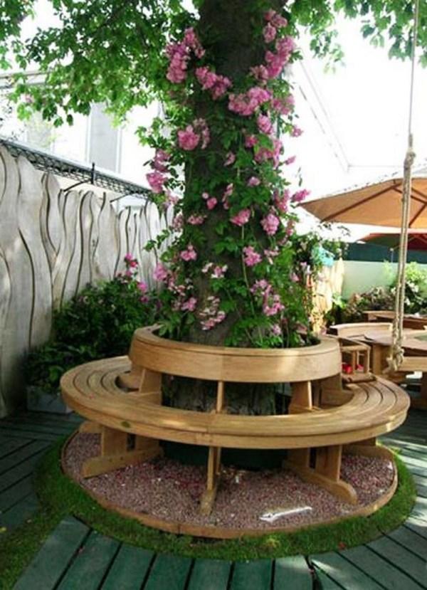 bench tree owner-builder