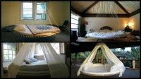 Swing Bed Made From Recycled Trampoline | The Owner ...
