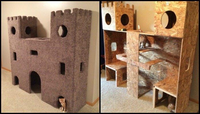 build a cat castle
