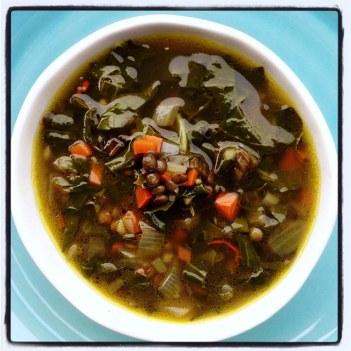 https://thepaddingtonfoodie.com/2014/04/28/eat-fast-and-live-longer-a-5-2-fast-diet-recipe-idea-under-100-calories-lemon-silverbeet-and-green-lentil-soup/