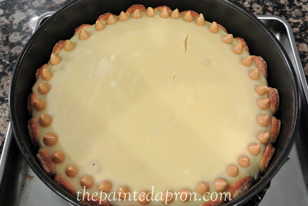 butterscotch tiramisu cheesecake