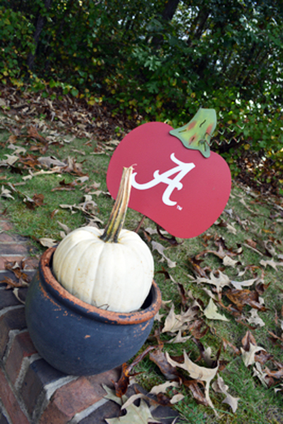 AL pumpkin