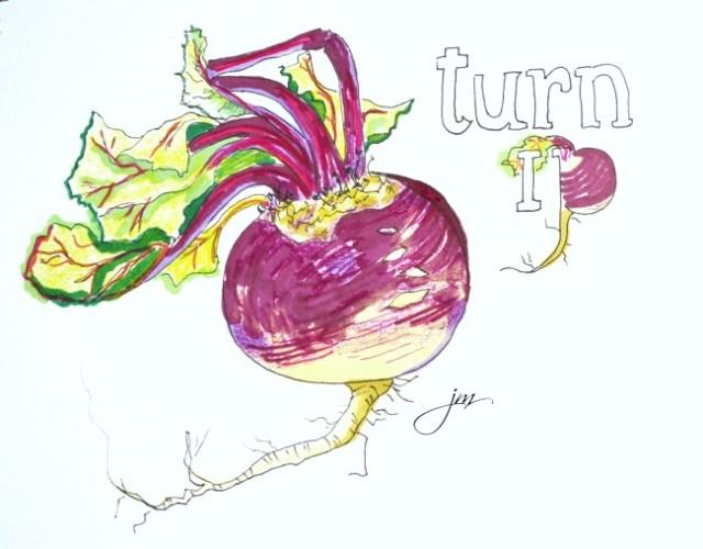 beet turnip