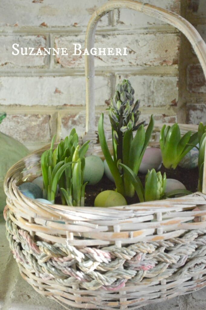 plastic kitchen cabinets soup kitchens in chicago spring easter basket bulb garden