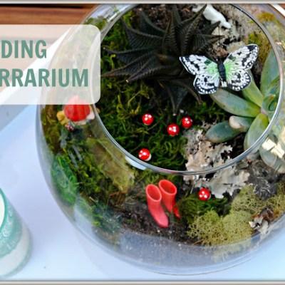 Building a Terrarium