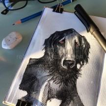 dogs of decemberIMG_7605