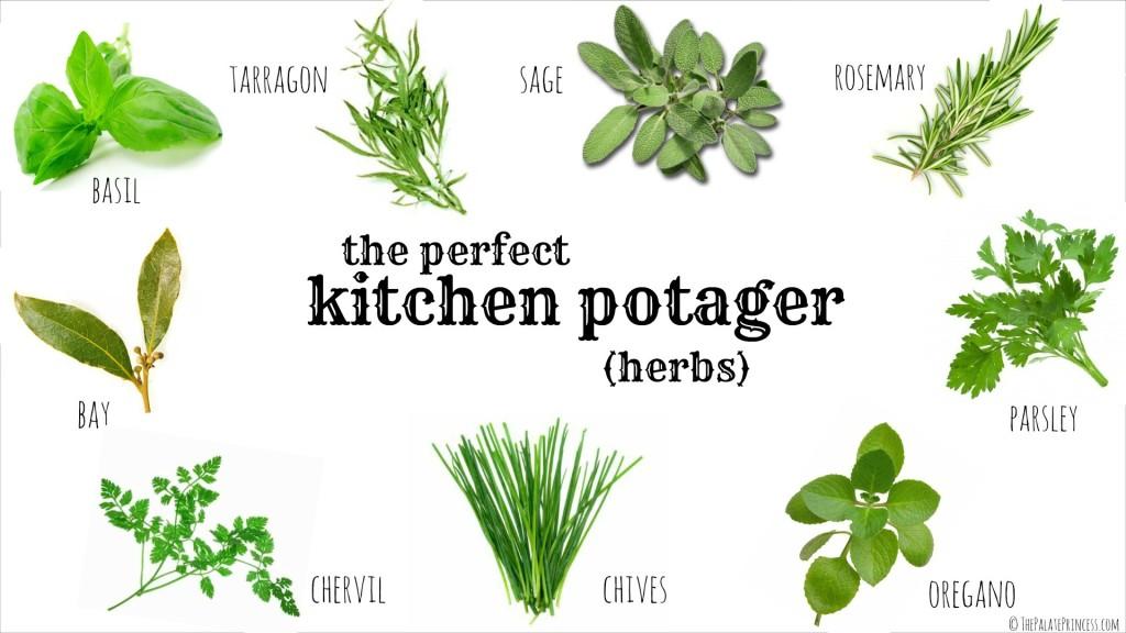 Indoor Culinary Herb Garden Kit
