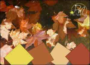 Fall Leaves Palette