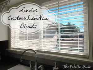 Window Blinds that Work Better than I Do