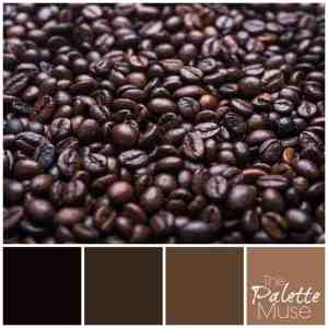 From rich dark brown, to creamy hazelnut, this coffee palette will wake you up! ThePaletteMuse.com