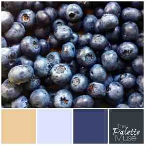 Blueberry Palette