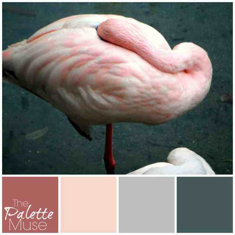 Hidden Flamingo Palette