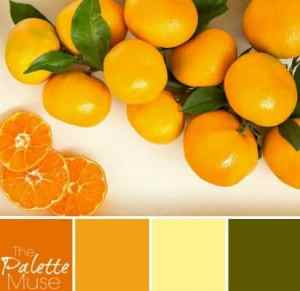 Fresh-Citrus-Palette