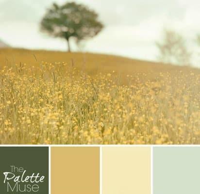 Sunny-Field-Palette