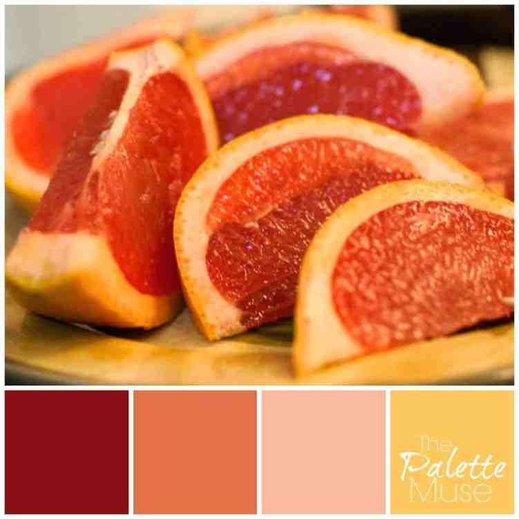 grapefruit-palette