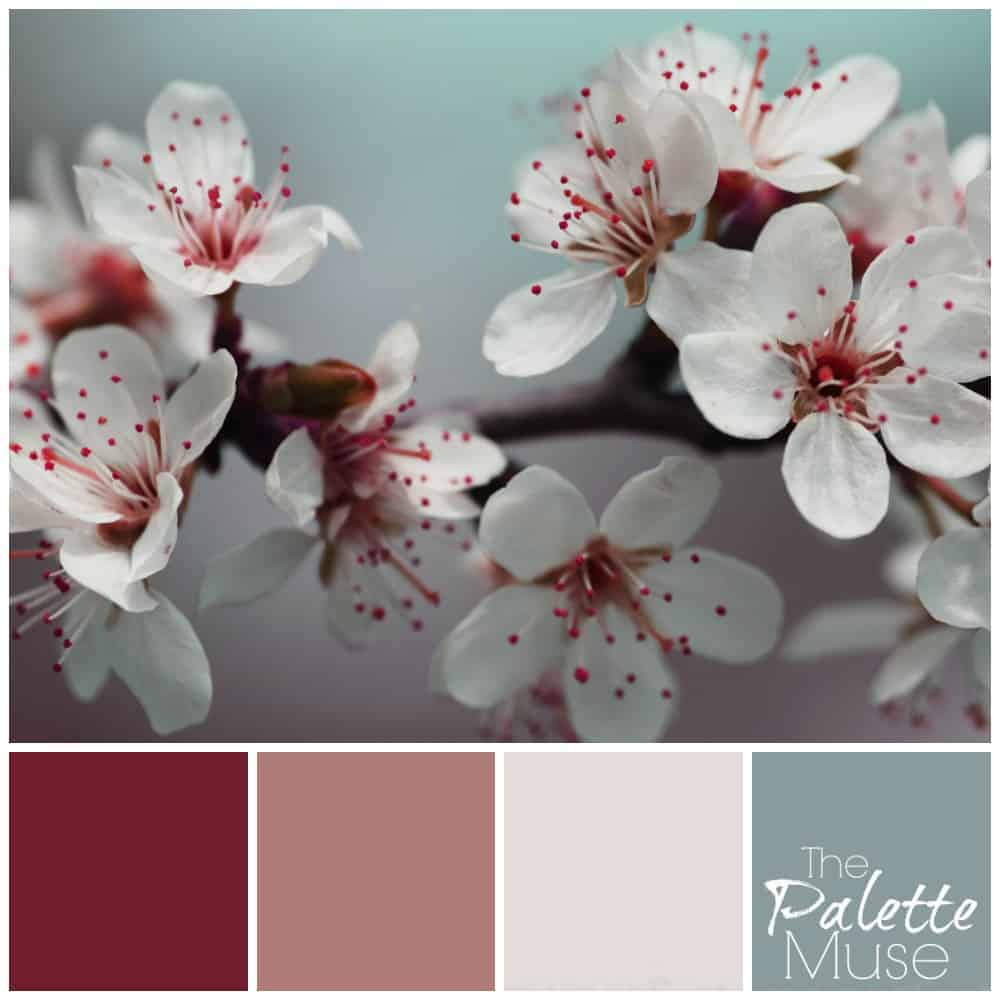 Delicate cherry blossoms make a spring palette of pinks and gray.