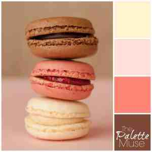 Chocolate, Raspberry, and vanilla macarons provide the tasty inspiration for this neopolitan flavored color palette. #colorpalette #colorinspo #thepalettemuse #neopolitan