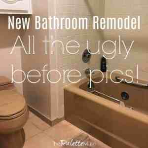 Ugly Before Pics of our New Bathroom Remodel