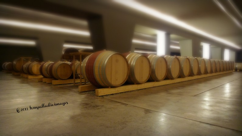 Cantina Santa Margherita | ©Tom Palladio Images