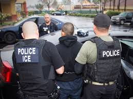 More than 3 out of 4 illegal immigrants arrested under Trump have criminal records