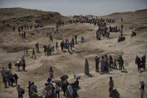 CFIS: Refugee admissions down 70% under Donald Trump