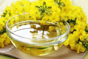 edible oil canola