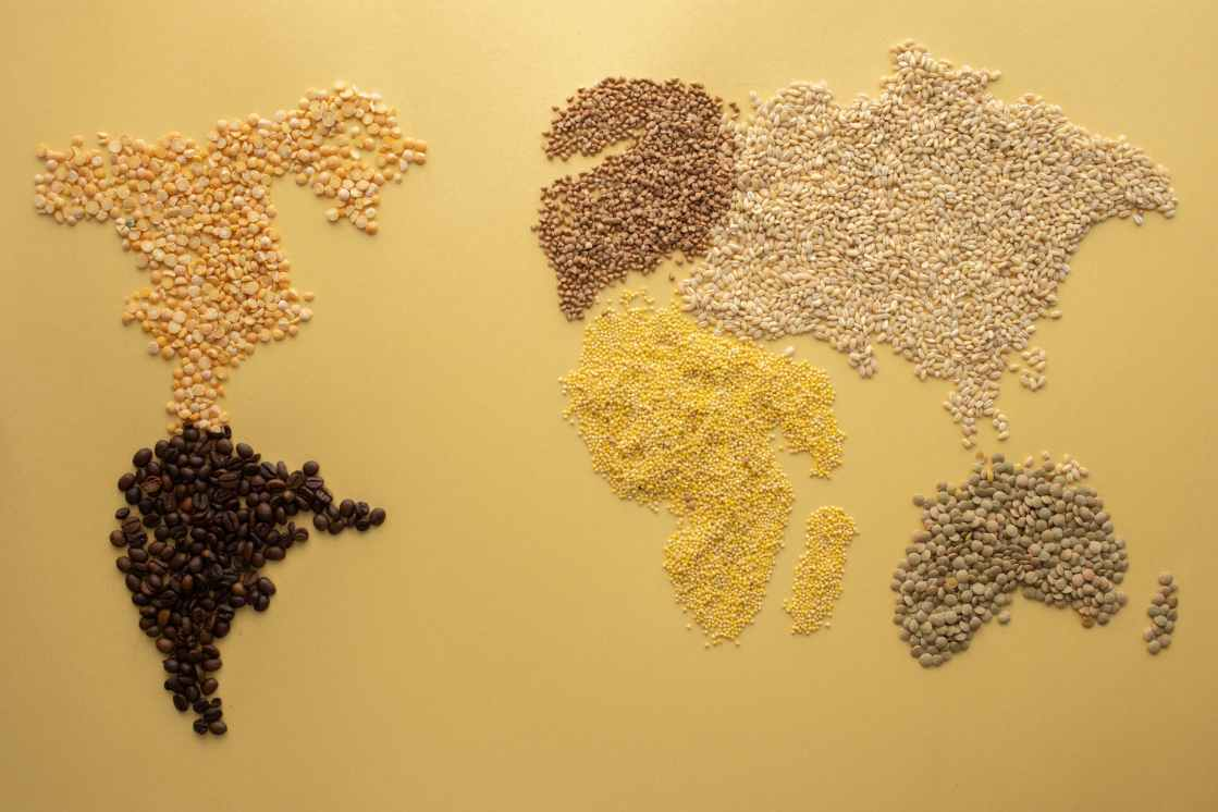 a world map made of grains and beans