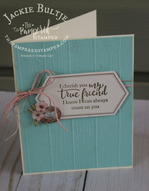 such a simple pretty card made from a piece of the envelope in the Paper Pumpkin Kit