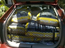 We get serious about yard cleanup. How much mulch can you fit in the back of a Prius? (19 bags!)