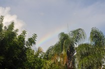 Sometimes we get gorgeous rainbows