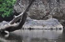river2_28d