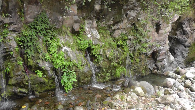 The walls above the river on the way to the canyon are covered with plants and waterfalls.